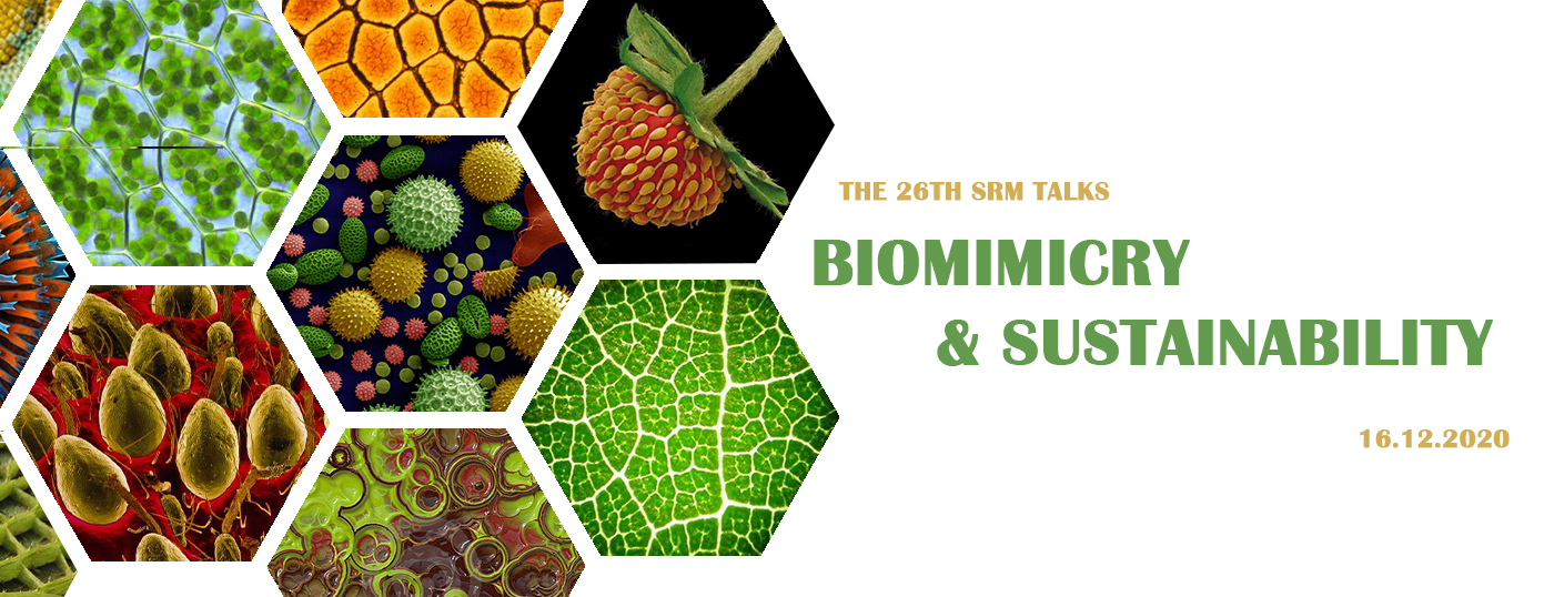 Dive into the world of Biomimicry and Sustainability